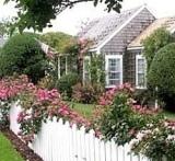 cottage designs