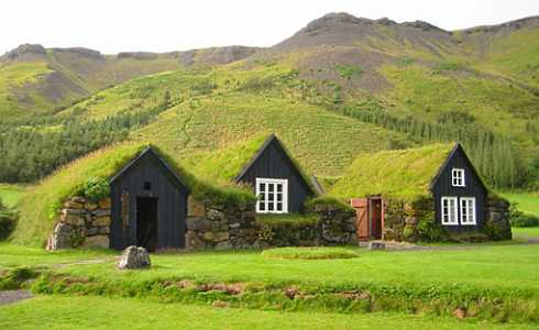 Green Roof Design For Small Cabins . . . Ahead Of Its Time!