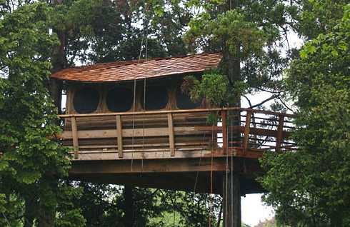 tree house designs