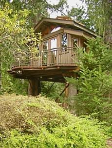 treehouse design