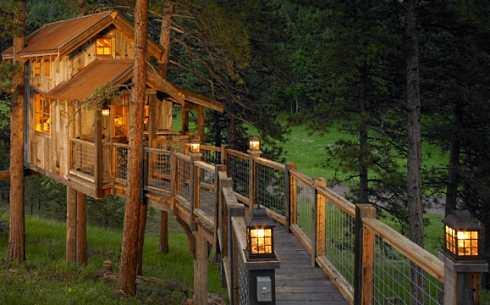 treehouse design
