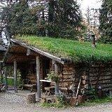 green roof design