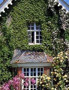 english cottage designs