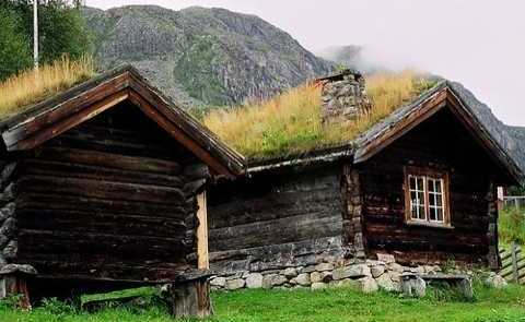 Green Roof Design For Small Cabins Ahead Of Its Time
